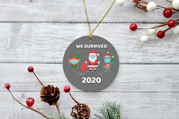 We Survived 2020 - Gray